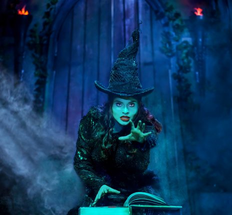 WICKED - Das Musical © Brinkhoff-Moegenburg